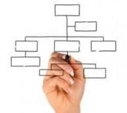 الهيكل التنظيمي لقسم إدارة الجودة