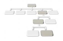 الهيكل التنظيمي لمراقب الامتثال في البنك المركزي والية التواصل المباشرة وغير المباشرة