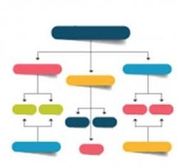 الهيكل التنظيمي لقسم إدارة المخاطر