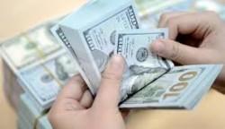 أيداعات الأوراق النقدية الأجنبية (الدولار)