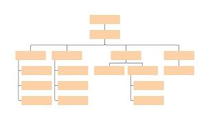 الهيكل التنظيمي لدائرة العمليات المالية وإدارة الدين